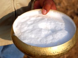 Camel Milk Middle Eastern delicacy