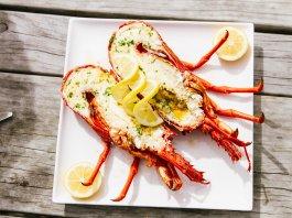 Fiordland Crayfish (rock lobster)