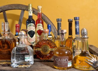 Tequila alcoholic drink